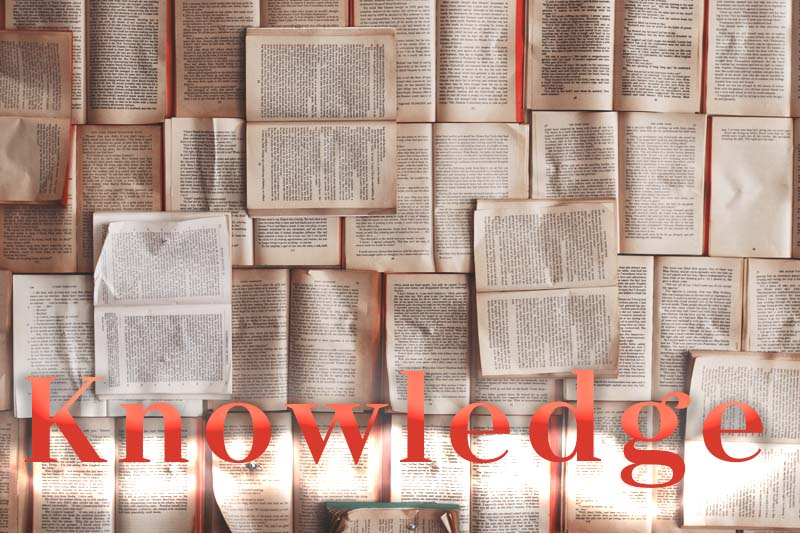 Our Daily deLIGHT~6th Day-Knowledge
