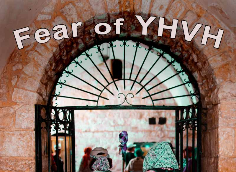 10th April 2021: Our Daily deLIGHT~7th Day-Fear of YHVH