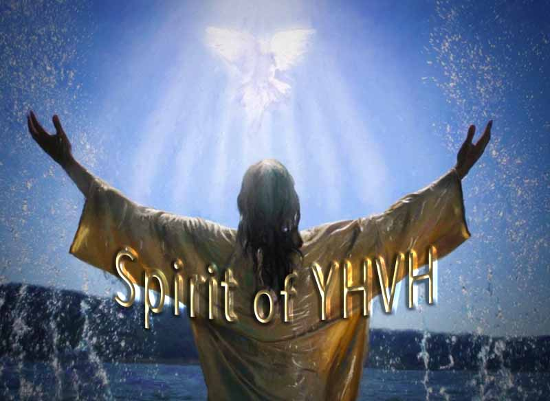 14th April 2021: Our Daily deLIGHT~4th Day-Spirit of YHVH