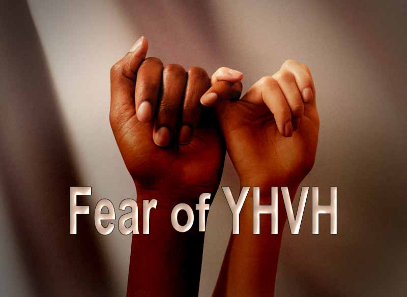 17th April 2021: Our Daily deLIGHT~7th Day-Fear of YHVH