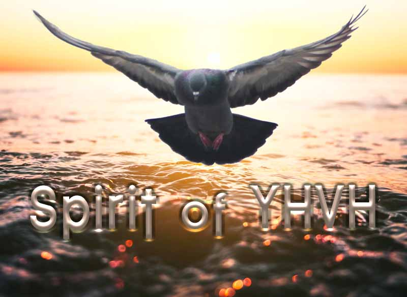 28th April 2021: Our Daily deLIGHT~4th Day-Spirit of YHVH