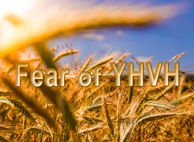 1st May 2021: Our Daily deLIGHT~7th Day-Fear of YHVH